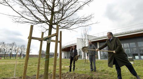Sviluppo sostenibile: un nuovo piano per il verde dell'Università di Parma