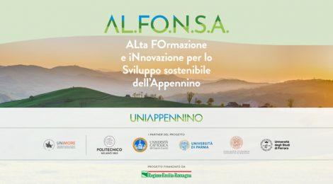 Video: webinar I ciclo AL.FO.N.SA